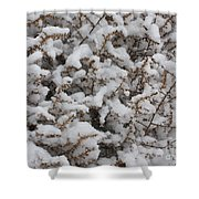 Winter's Contrast Shower Curtain