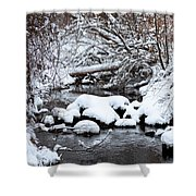 Winters Crossing Shower Curtain