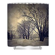 Winter's Dark Thoughts Shower Curtain