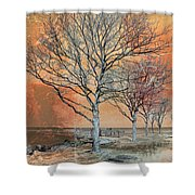 Winter's Dawn Shower Curtain