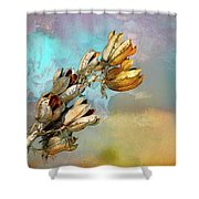 Winters Day Desert Yucca Shower Curtain