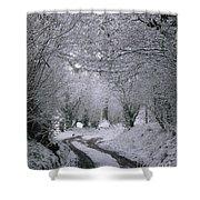 Winters Lane Shower Curtain