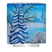 Winters Palette Shower Curtain