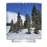 Winter's Peace Shower Curtain