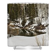 Winters Pond Shower Curtain