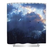 Winter's Solace Shower Curtain