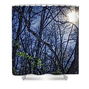 Wintersun Shower Curtain