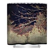 Wintervwoods Shower Curtain