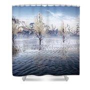 Wintery Coast Shower Curtain