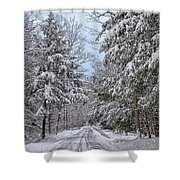 Wintery Country Road Shower Curtain