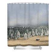 Wintery Mountain Ranch Shower Curtain