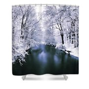 Wintry White Shower Curtain