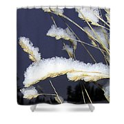 Wintry Wild Oats Shower Curtain