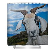 Wip 2- Goats Of St. Martin Shower Curtain