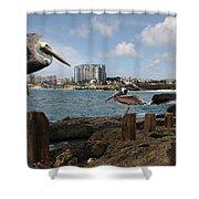 Wip- Pelican 00 Shower Curtain