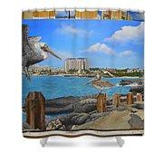 Wip-pelican 08 Shower Curtain