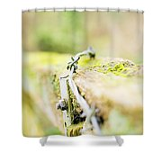 Wire On The Fence Shower Curtain