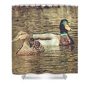 Wisconsin Ducks Shower Curtain