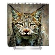 Wise Bob Cat Shower Curtain