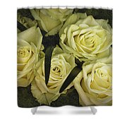 Wish For Happiness Shower Curtain