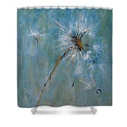 Wishes Shower Curtain