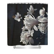 Wipsy Mini Magnolias Shower Curtain