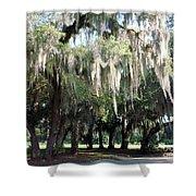 Wispy Willows Shower Curtain