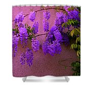 Wisteria At Sunset Shower Curtain