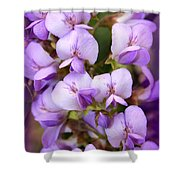Wisteria Blossoms Shower Curtain