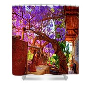 Wisteria Canopy In Bisbee Arizona Shower Curtain
