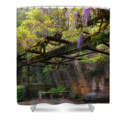Wisteria Flowers Blooming On Trellis Over Water Fountain Shower Curtain