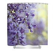 Wisteria's Soft Floral Whispers Shower Curtain