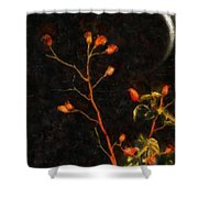 Witch Moon Shower Curtain