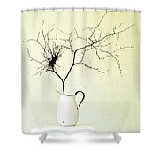 Witches' Broom Shower Curtain