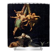Witches' Flight Shower Curtain