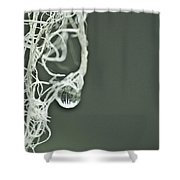Witch's Hair Shower Curtain