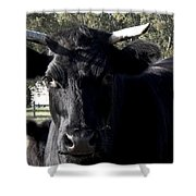 With Love - Bull Friend Shower Curtain
