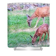 With Mother Shower Curtain