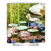 Withered Lotus In The Pond 2 Shower Curtain