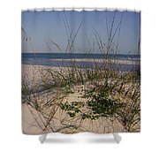 Withering Dunes Shower Curtain