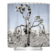Withering Joshua Tree Shower Curtain
