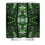 Within Another Dimension  Shower Curtain