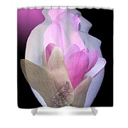 Within Love Shower Curtain