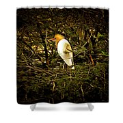 Within Nature Shower Curtain