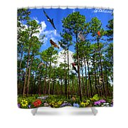 Withlacoochee State Forest Nature Collage Shower Curtain