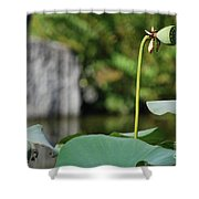 Without Protection Number Four Shower Curtain