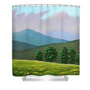 Witness Trees In Spring Shower Curtain