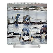 Wnter Clam Diggers Shower Curtain