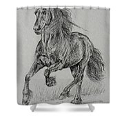 Wobke 403 Sport Friesian Shower Curtain