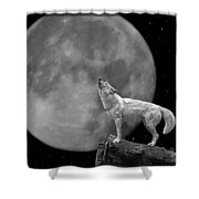 Wolf And Moon Shower Curtain